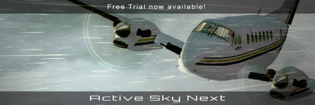 activeskynextwebsitemediumbanner